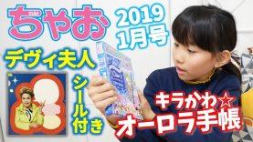 ちゃお1月号 キラかわ☆オーロラ手帳 2019