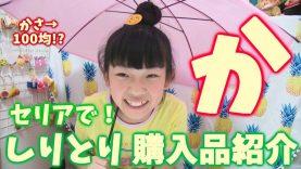 【かわいい傘も100円!?】しりとり☆購入品紹介【セリア編】