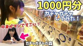 久しぶりにガチャガチャ1000円分回して来た!このクオリティはスゴイものばかり!!