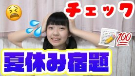 【中2】夏休みの宿題を紹介andどれくらい終わってるかチェック!!!