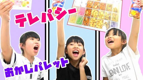 テレパシーお菓子パレットに挑戦!!シンクロチャレンジ!にゃーにゃちゃんねるnya-nay channel