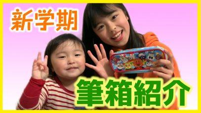 【おしゃれ】中学生用の筆箱紹介!【シンプル】