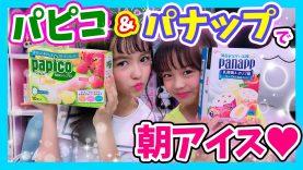 【朝アイス】「朝食べたくなる!オリジナルアイス」をパピコ・パナップでアレンジしてみた!