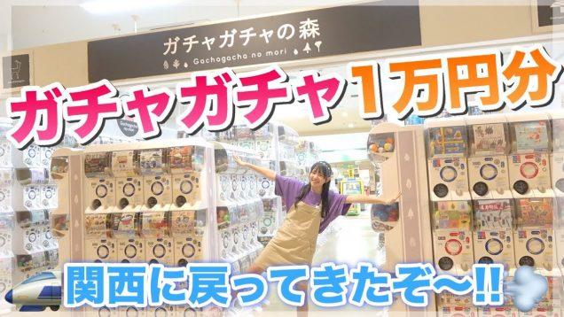 「ガチャガチャ1万円分」関西最大級のガチャガチャを大量に回してきた!!【ガチャガチャの森 】