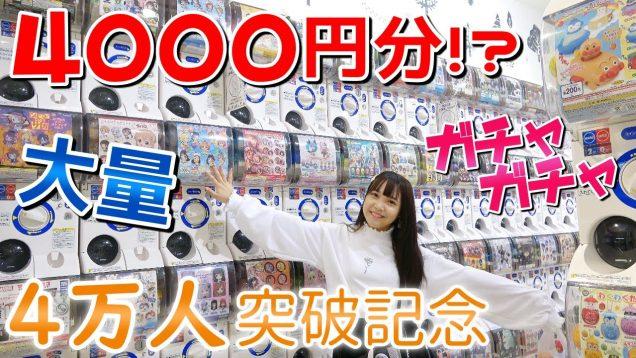 【4万人記念?】4000円分ガチャガチャやってみた!【ガチャガチャの森】