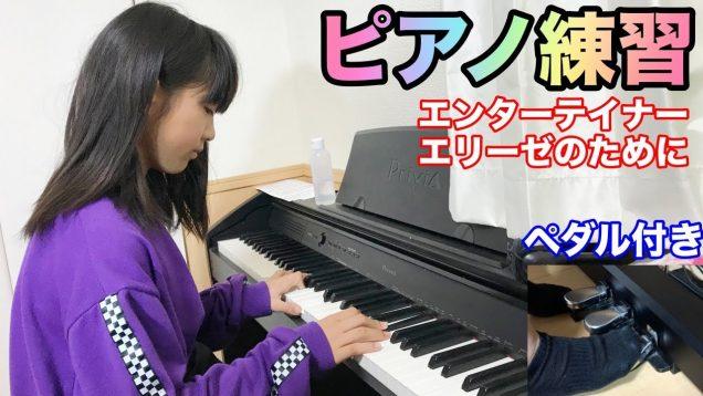 ピアノ練習 エリーゼのために ジ・エンターテイナー スコット・ジョプリン Scott Joplin ルートヴィヒ・ヴァン・ベートーヴェン Ludwig van Beethoven Piano