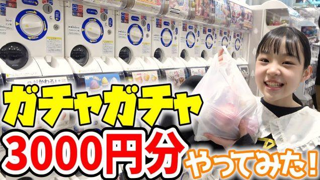【ガチャガチャの森】3000円分やってみた!!