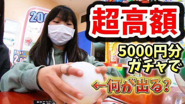 【PS4】食費を削ってガチャガチャ5000円やってみた結果【しほりみチャンネル】