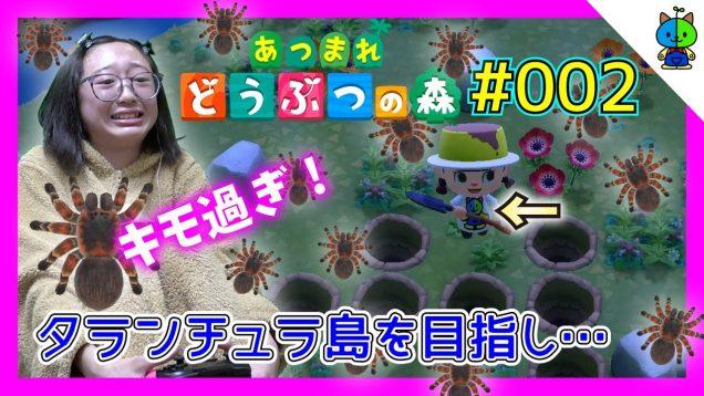 【あつ森】キモ過ぎ注意!タランチュラ島を目指す?#002【ももかチャンネル】