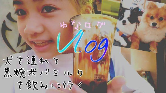 【Vlog】2匹の犬達を連れてタイガーシュガーの黒糖タピオカミルクを飲みに行く! Tiger Sugar ★ゆなログ