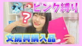 【ピンク縛り】〜1000円で買った文房具購入品紹介〜リピ買い品も!