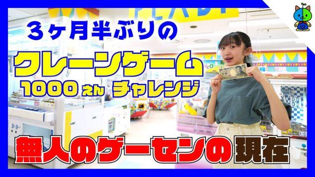 【クレーンゲーム 】超絶久しぶりに無人のゲーセンで1000円チャレンジした結果!!【ももかチャンネル】