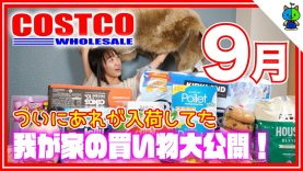 【コストコ】我が家のCOSTCO購入品紹介!2020年9月版 ?【ももかチャンネル】