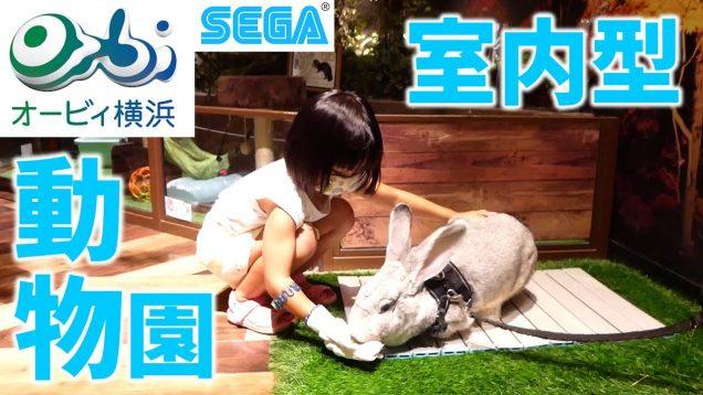 オービィ横浜で動物を見て!触って!大満足