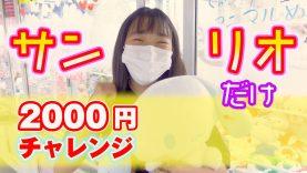 サンリオだけ!【2000円】クレーンゲームチャレンジ