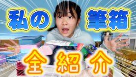 私の筆箱全紹介!小さい時の物~現役バリバリの筆箱まで!!