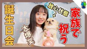 【メモリアル】麦ちゃん1才の誕生日を家族で盛大に祝う♪【ももかチャンネル × 丸麦チャンネル】