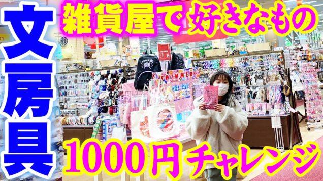 雑貨屋で文房具1000円チャレンジ!何を買う???【しほりみチャンネル】