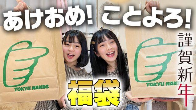 【2021年】東急ハンズの文房具系福袋を開封♪今年もひまーるをよろしくお願いします!