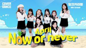 April [에이프릴] – Now or Never [나우 오어 네버] DANCE COVER 댄스커버 with Milk Caramel 밀크카라멜|클레버TV