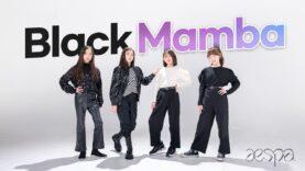 Aespa [에스파] – Black Mamba [블랙맘바] with Vitamin, Pierce [비타민, 피어스] K-POP DANCE COVER|Clevr Studio