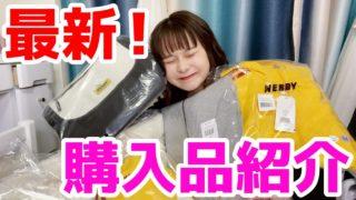 可愛すぎる!最新のNERDY購入品紹介!!