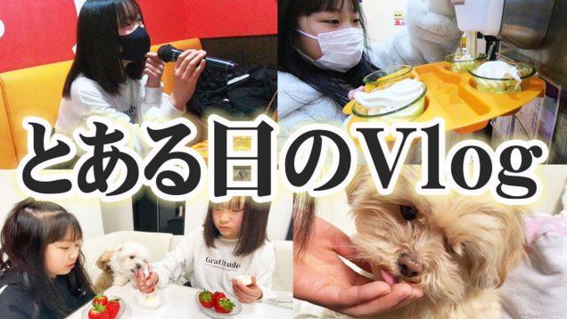 【とある日のViog】お休みの日の過ごし方♪美味しいイチゴにかわいい愛犬にカラオケ♪♪♪【しほりみチャンネル】