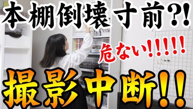 【危ない!】緊急事態発生で撮影中断!本棚が倒壊寸前?!【しほりみチャンネル】