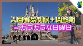 【ガラガラ】入園者制限中のディズニーランドが衝撃的だった!【ももかチャンネル】