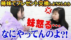 姉妹でプレゼント交換♪しようとしたら妹怒る…。(妹→姉編)【しほりみチャンネル】
