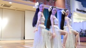 [Hula dance] Lokomaikai フラダンスショー 2020 ① [4K60P]