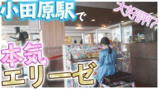 【感動】小田原駅でエリーゼのためにをガチ演奏!小学生ピアニストの本気