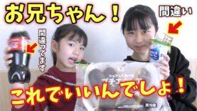 お兄ちゃんの好きな物を買ってきて!!!お菓子・おにぎり・パン・飲み物・デザート!の中から1つずつ選んで買ってみた結果・・・