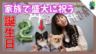 【メモリアル】丸太郎2才の誕生日を家族で盛大に祝う♪【ももかチャンネル × 丸麦チャンネル】
