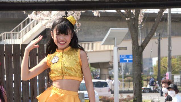 オレンジ『オレンジバブル』@前橋公園 2021.04.03 1部