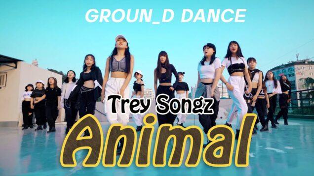 REY SONGZ- ANIMAL I  CHOREO_ RED CROWN @GROUN_D DANCE
