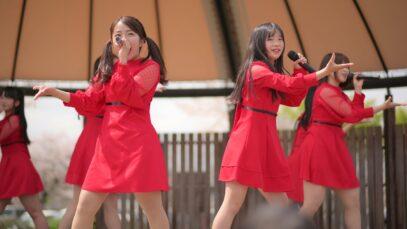 あかぎ団 「Sakura超特急」 2021/04/03 前橋公園