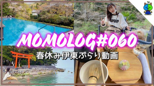 【vlog】春休み!伊東の婆ちゃん宅へ向かう道中ぶらりvlog🐶MOMOLOG#060【ももかチャンネル】