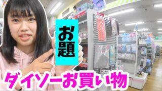 ダイソーお買い物チャレンジ★お題の商品しか買えないよ!★にゃーにゃちゃんねるnya-nya channel