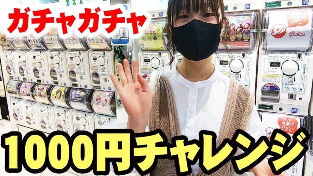 大好きなアレ発見!ガチャガチャ!1000円チャレンジ【しほりみチャンネル】