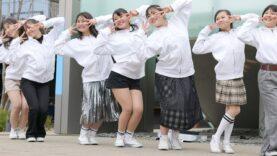 【EOS R5/4K】 道の駅アイドル ミミ (猫の踊り子ミミ)/伊豆ゲートウェイ函南 20210307 [4K]