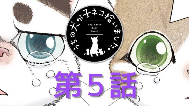【第5話】「うちの犬が子ネコ拾いました。」【ボイスコミック】