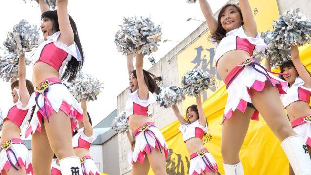 ド迫力!! Tigers Girls チアリーダー ダンスステージ 阪神タイガース [4K]