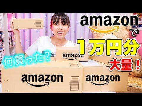 Amazonで1万円分買っていいよ!いきなり言われたら何買う?ずっと欲しかったアレやロッキーのおもちゃ!【Amazon】【1万円分】