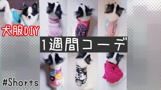 犬服DIY【1週間コーデ】娘の着れなくなった服を再利用♻  DIY Dog Clothes #Shorts