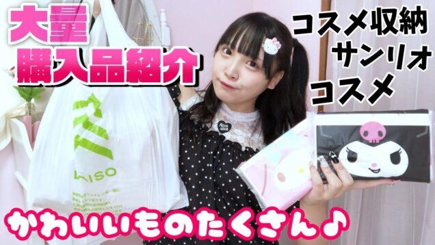 【大量】可愛い購入品紹介🍒【JK】