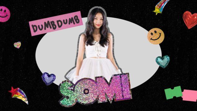 SOMI (전소미) – 'DUMB DUMB' DANCE COVER @GROUN_D