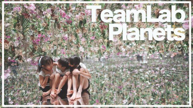 【TeamLab】平日夕方がオススメ!新エリアの楽しみ方を紹介♪