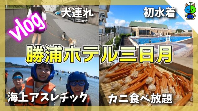 【vlog】海だ!カニだ!三日月だ!夏休み一泊二日勝浦の旅【ももかチャンネル】