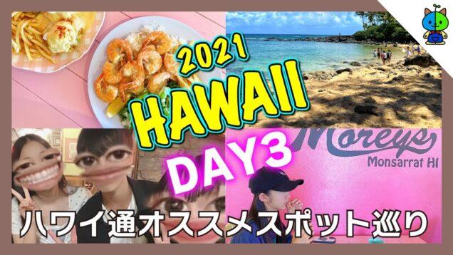 【vlog】DAY3 ハワイ通のおすすめスポットを巡る #004 🌴 2021hawaii【ももかチャンネル】